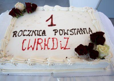 Podsumowanie pierwszego roku działalności CWRKDiZ w Koninie - konferecja (11)